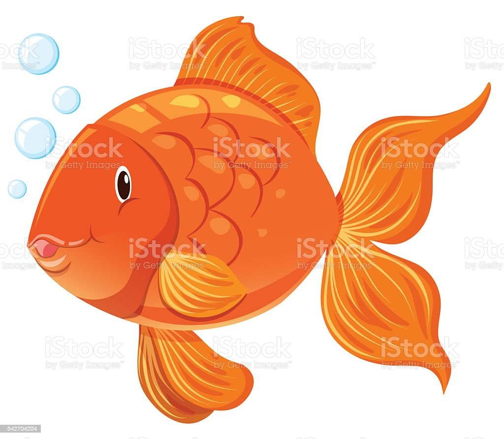 Goldfish with happy face vector art illustration