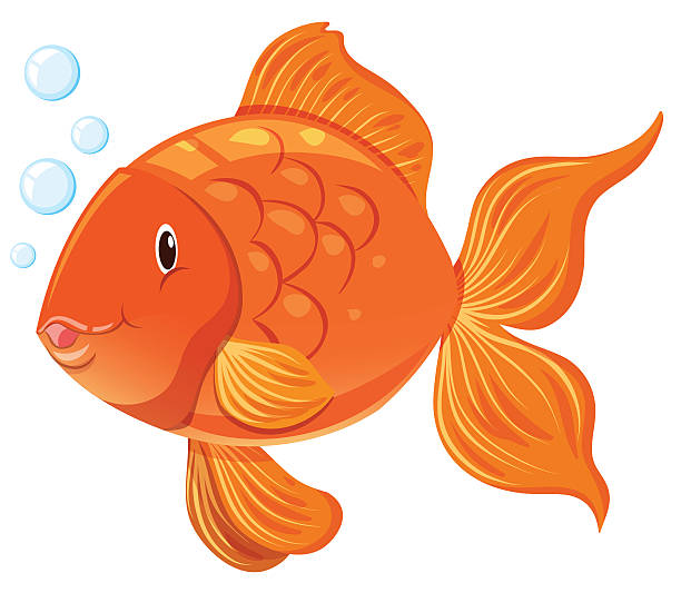 Royalty Free Goldfish Clip Art, Vector Images ...