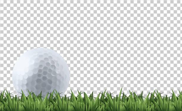 ilustrações de stock, clip art, desenhos animados e ícones de golf ball on grass - golf
