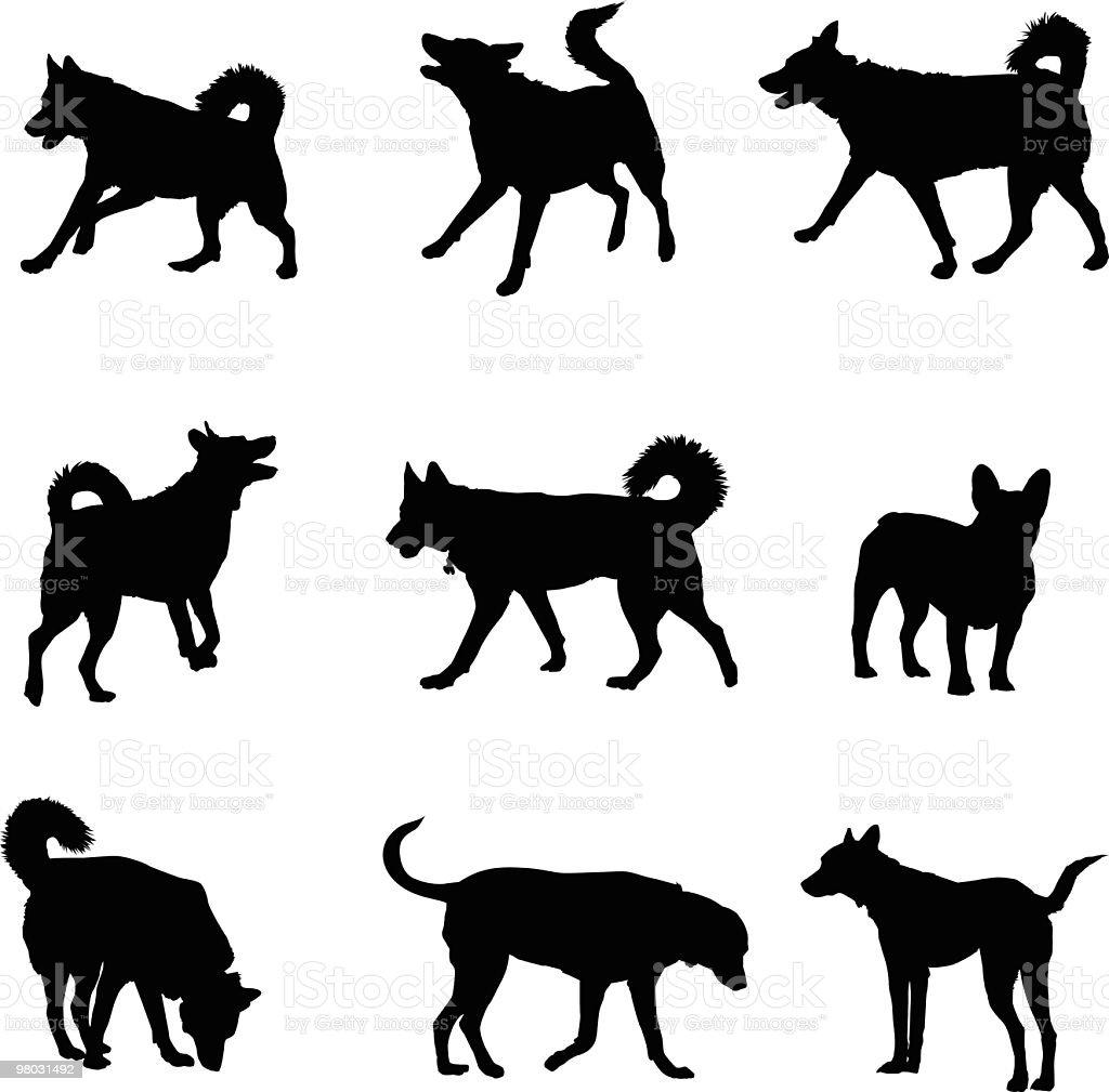 Good dogs vector art illustration