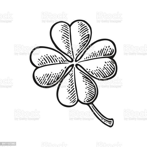 Good luck four leaf clover vintage vector engraving illustration vector id641152380?b=1&k=6&m=641152380&s=612x612&h=tarlwpnvkfhl3zfzl sdgw7rcweua am4zgcnouw6 0=