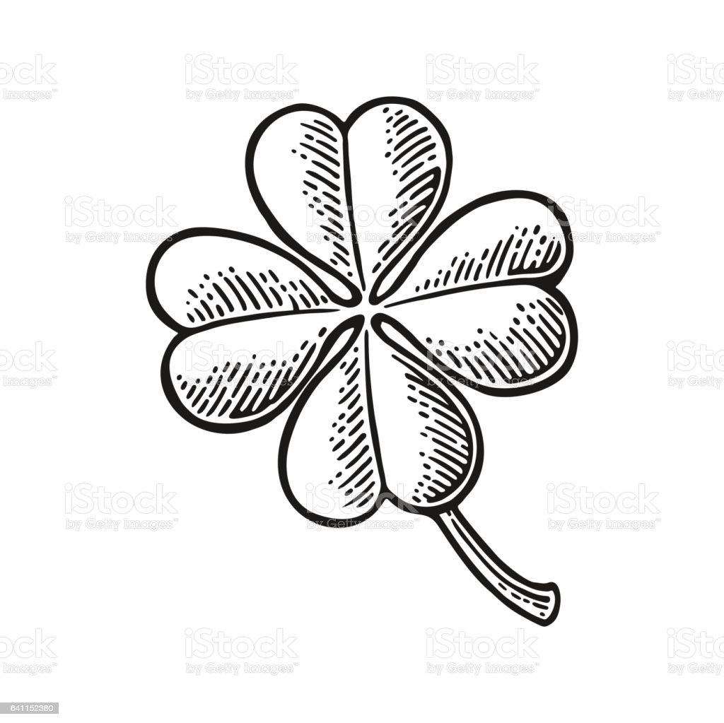 Good luck four leaf clover. Vintage vector engraving illustration vector art illustration