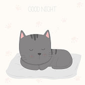Good night sleeping cat.