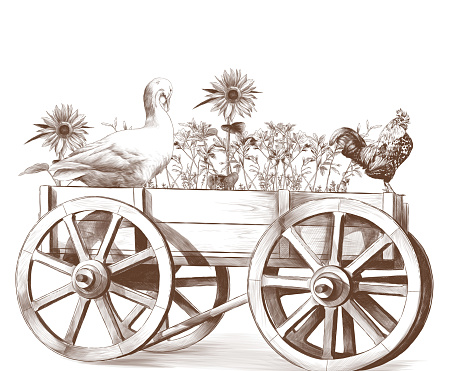goose and rooster sitting in a wooden cart inside which grows grass and sunflowers
