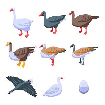 Goose icons set, isometric style