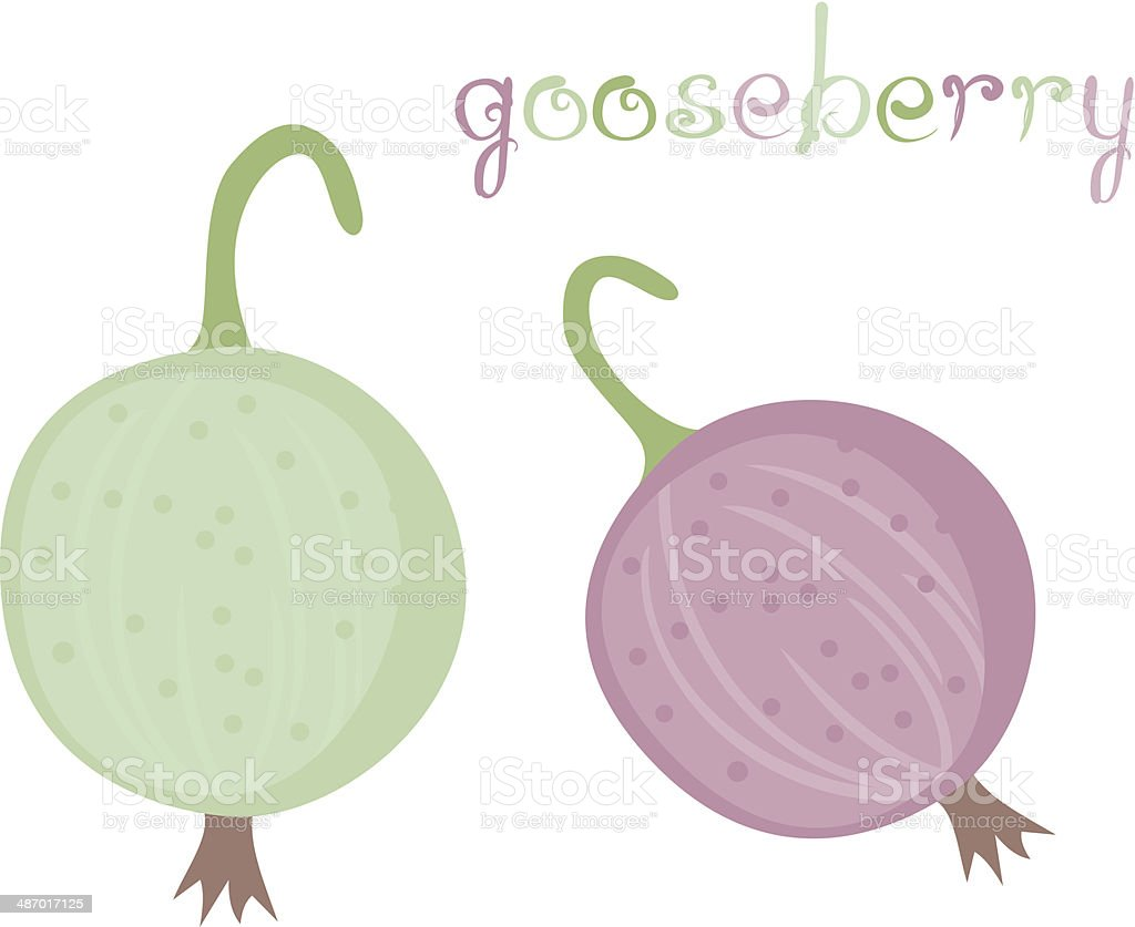 Gooseberry royalty-free gooseberry stock vector art & more images of agriculture