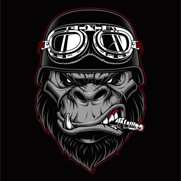 Gorilla biker mascot Gorilla biker mascot with spark plug in the mouth. gorilla stock illustrations