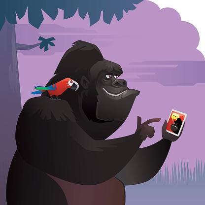 gorilla chatting