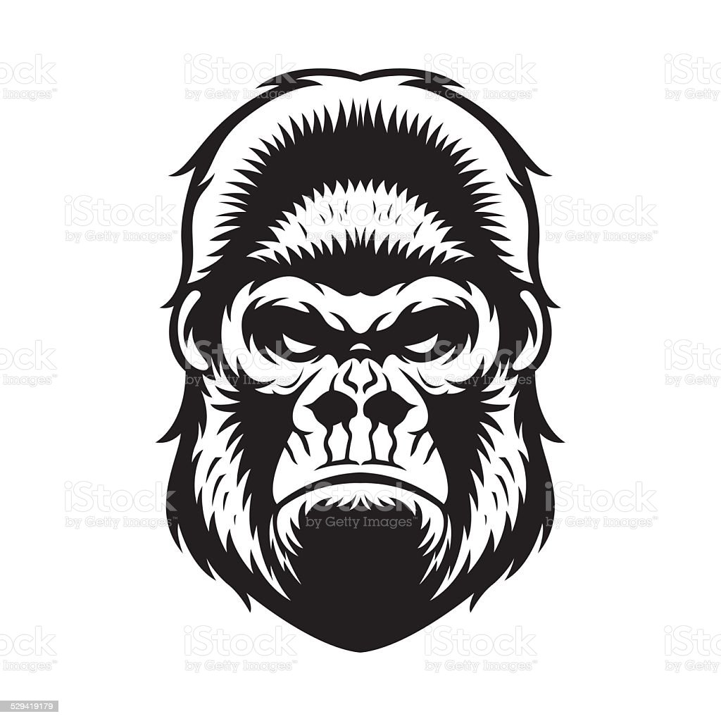 Gorilla Head BW vector art illustration