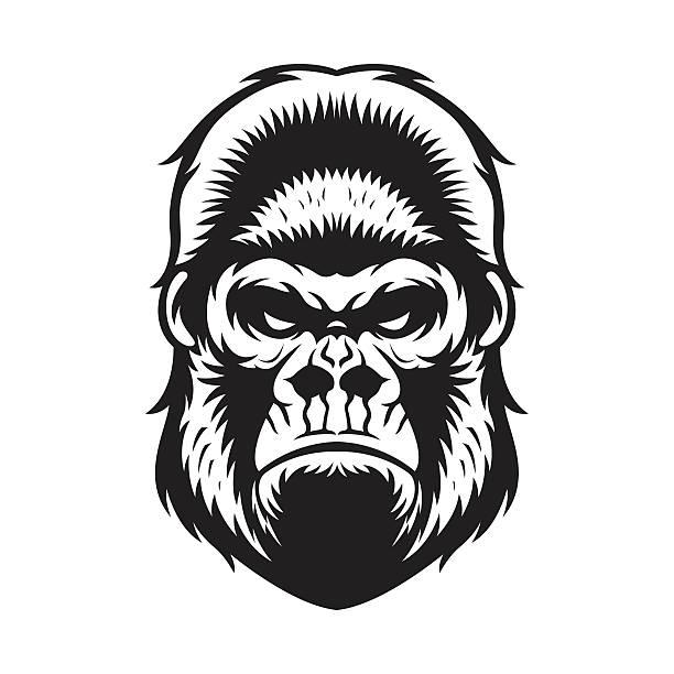 gorilla head bw - gorilla stock illustrations