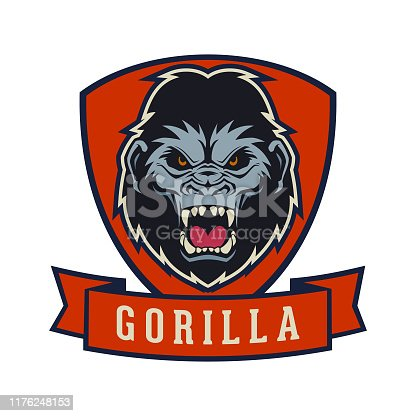 Angry gorilla head on a shield. Ape with open mouth - vector emblem with changeable text on ribbon