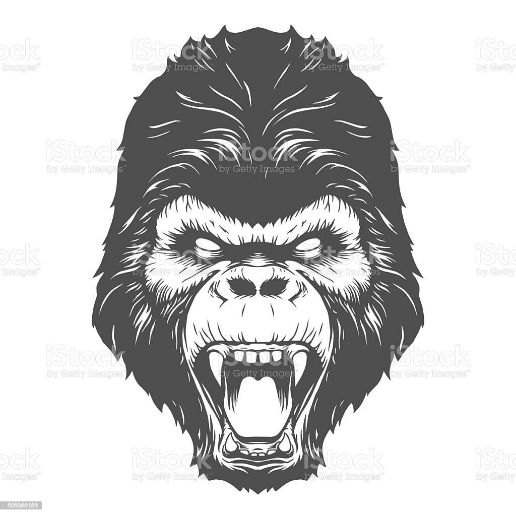 Gorilla head vector art illustration