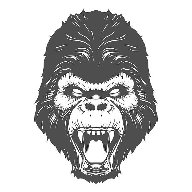 ilustraciones, imágenes clip art, dibujos animados e iconos de stock de gorila de cabeza - gorila