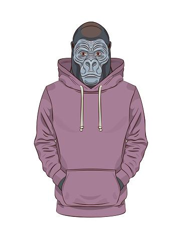 Gorilla in a purple sweatshirt or hoodie.