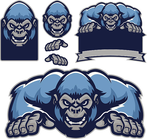 ilustraciones, imágenes clip art, dibujos animados e iconos de stock de gorila kit - gorila