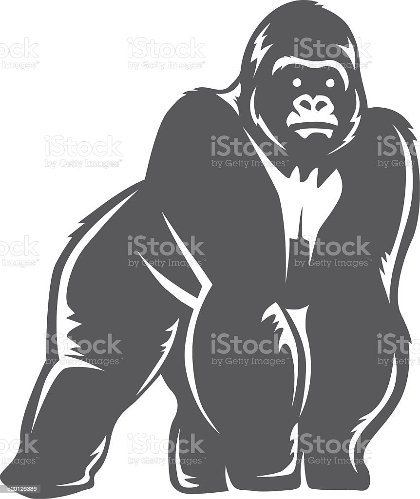 gorilla stand gray vector art illustration