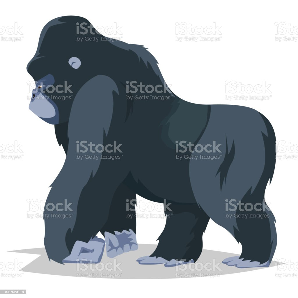 Gorilla walking side view vector art illustration