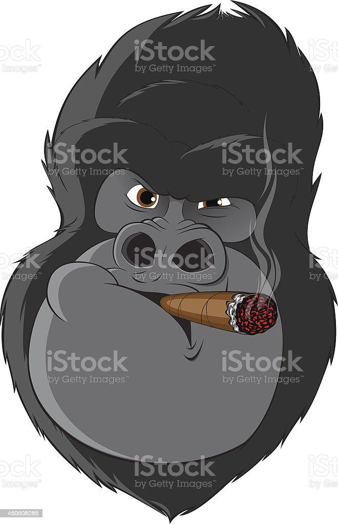 gorilla with a cigarette vector art illustration