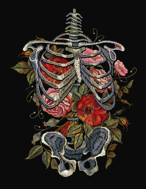 Gothic embroidery skeleton ribs and flowers. Fashionable clothes, t-shirt design, beautiful flowers, renaissance style vector. Embroidery human rib cage with red roses vector art illustration