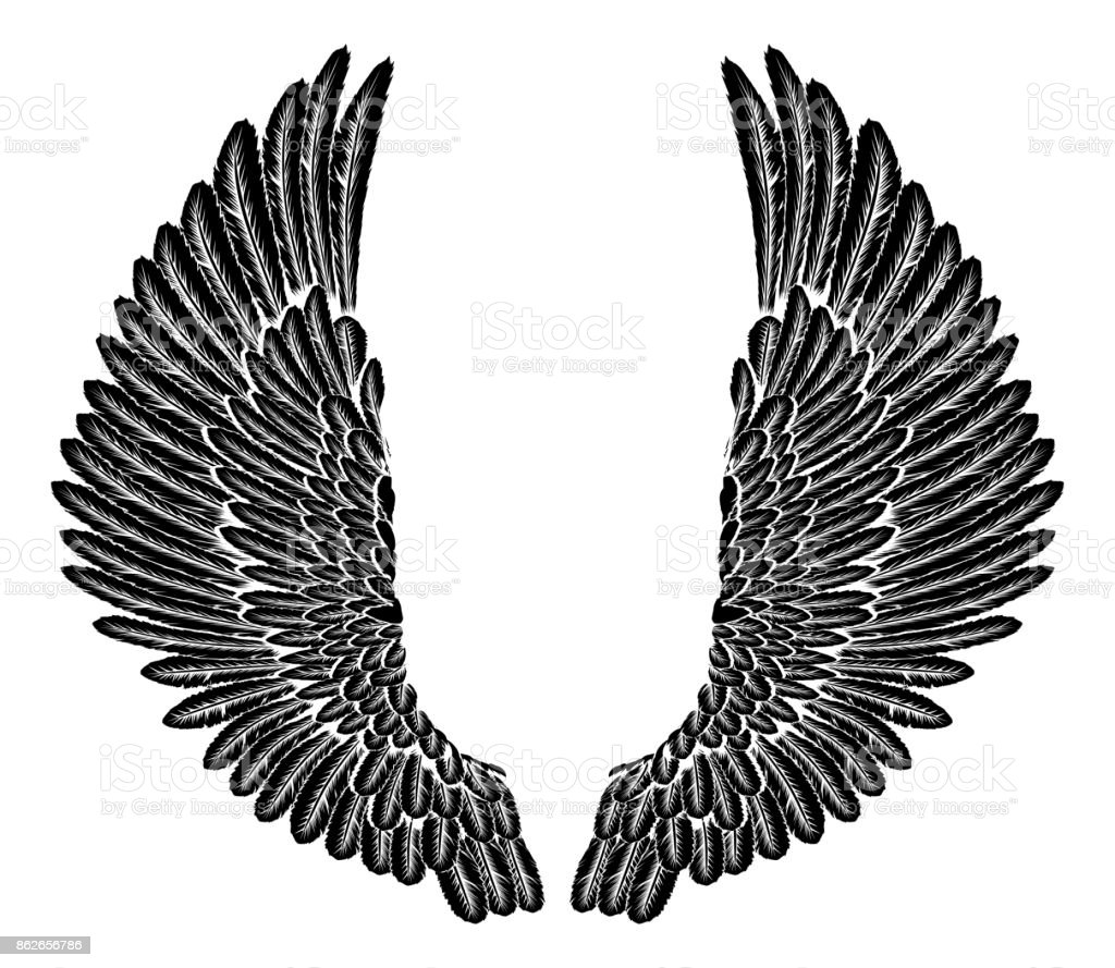 Gothic Wings vector art illustration