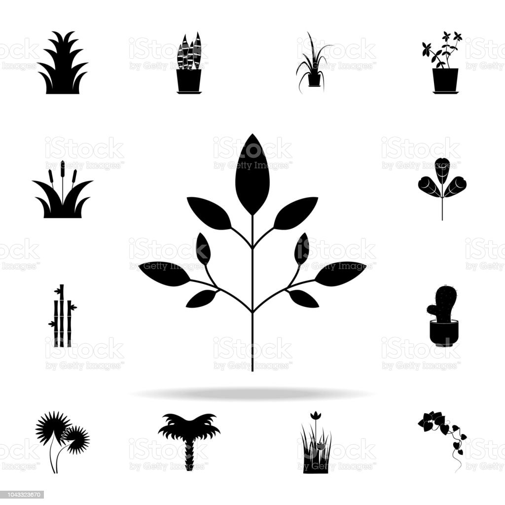goutweed icon. Plants icons universal set for web and mobile vector art illustration