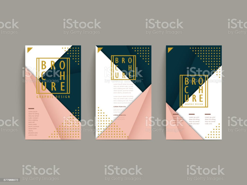 graceful brochure template vector art illustration