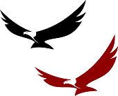 Graceful soaring eagle
