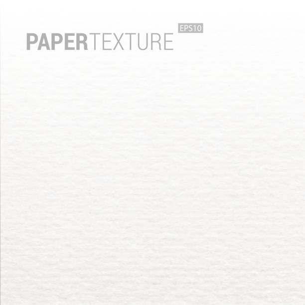 gradation realistic white paper background texture. - wrinkled backgrounds stock illustrations, clip art, cartoons, & icons
