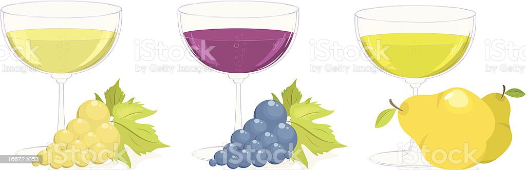 grape and fruit wines. vector set