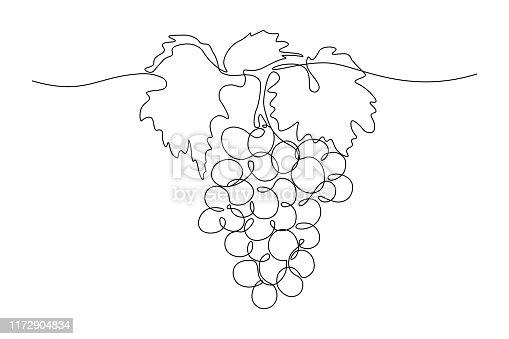 istock Grape bunch 1172904834