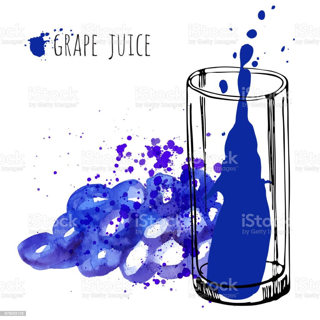 Grape juice in glass and grapevine vector illustration. Watercolor sketch about grape drink and fresh juice. Hand draw glass and health grapes drink. royalty-free grape juice in glass and grapevine vector illustration watercolor sketch about grape drink and fresh juice hand draw glass and health grapes drink stock vector art & more images of art