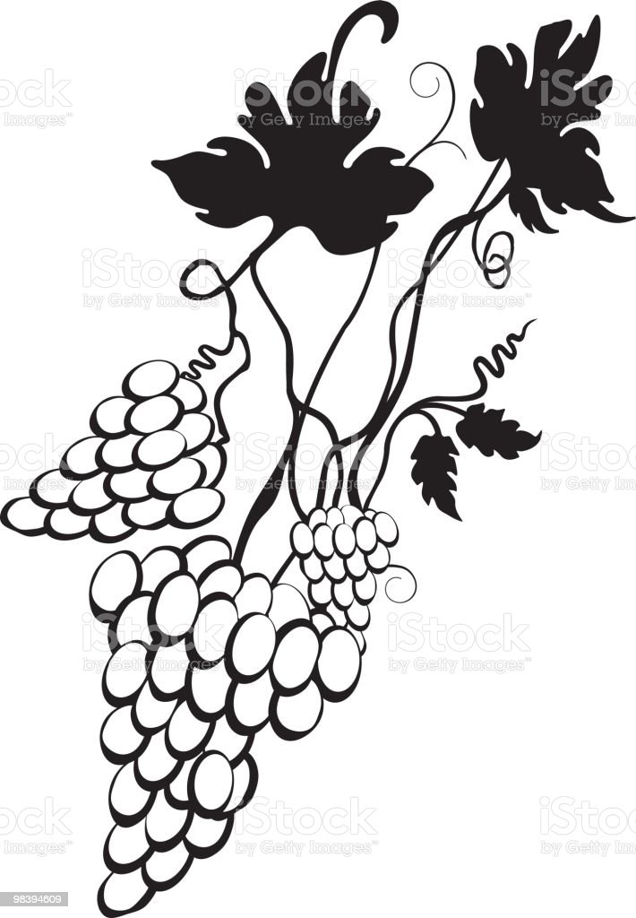 Grape portion royalty-free grape portion stock vector art & more images of branch - plant part