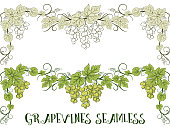Horizontal Seamless Ornament, Grape Vines with Berries and Leaves, Color Green and Contour Pictogram Version. Vector