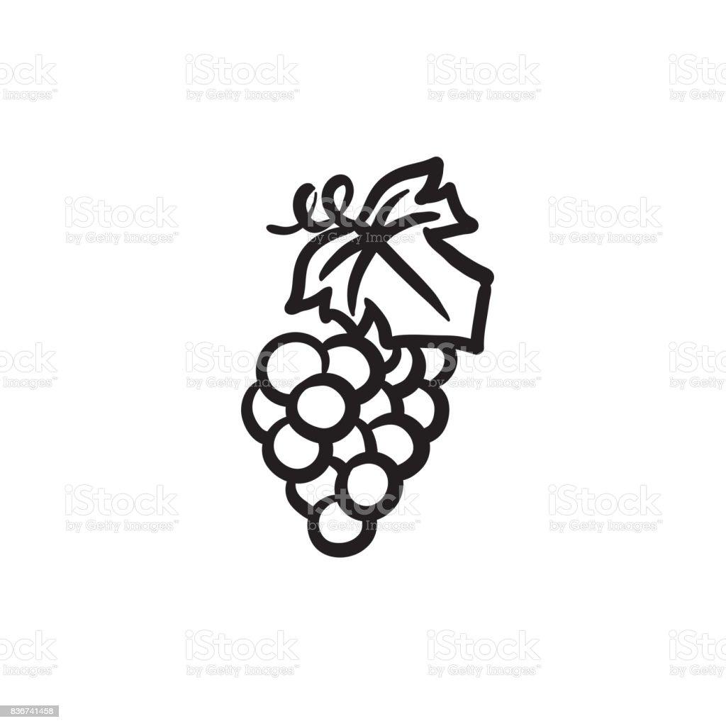 ilustração de uva ícone de desenho e mais banco de imagens de adulto