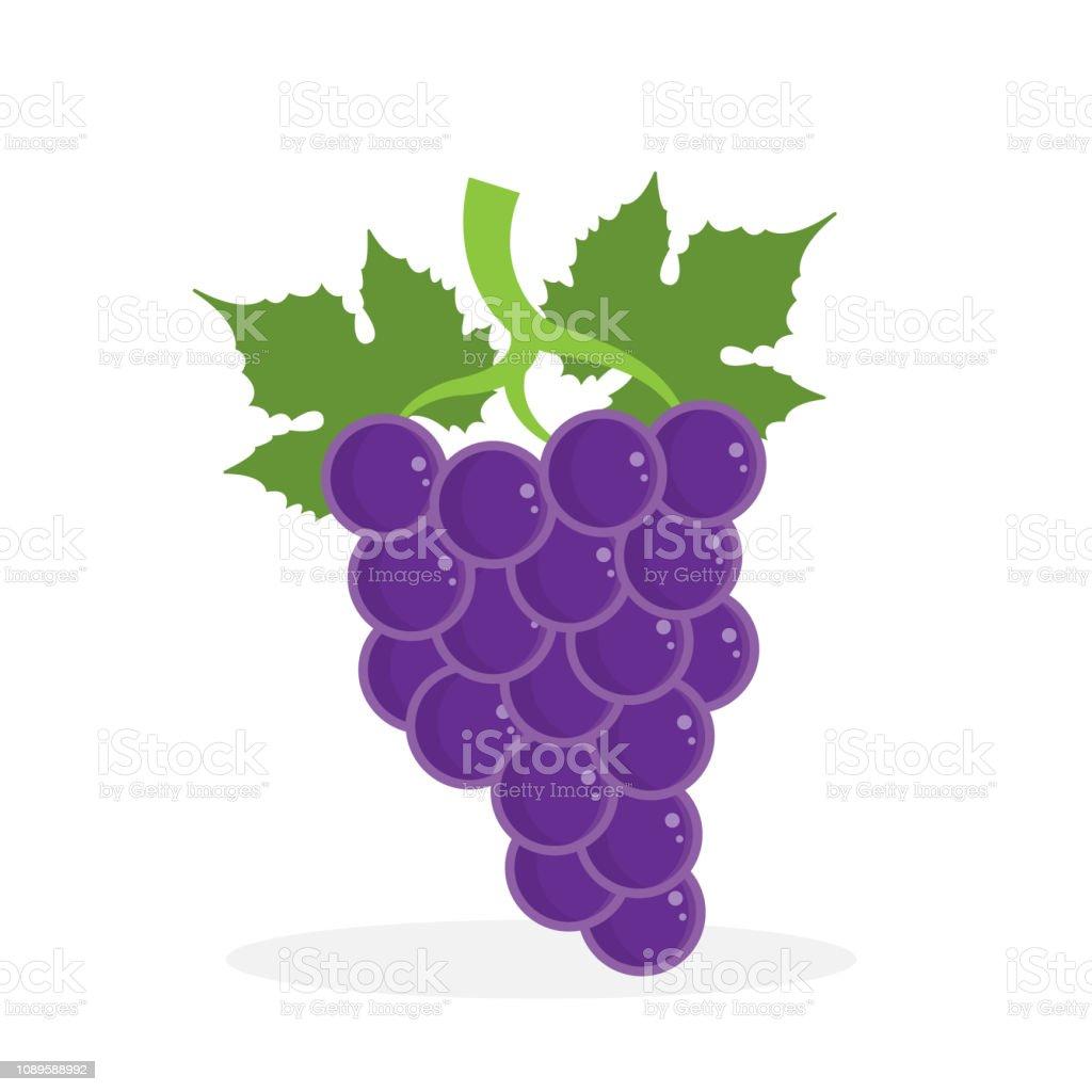 grape. eps 10 vector file