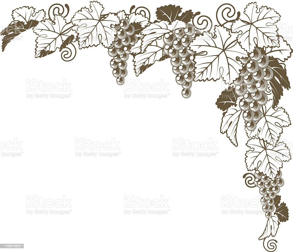 Grape vine corner ornament royalty-free grape vine corner ornament stock vector art & more images of berry