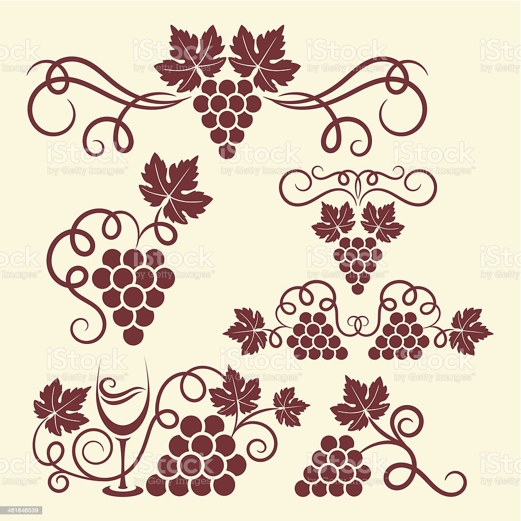 grape vine elements vector art illustration