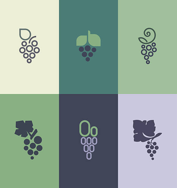 Grape with leaf. Logo templates set Grape with leaf. Logo templates set. Elements for design bunch stock illustrations