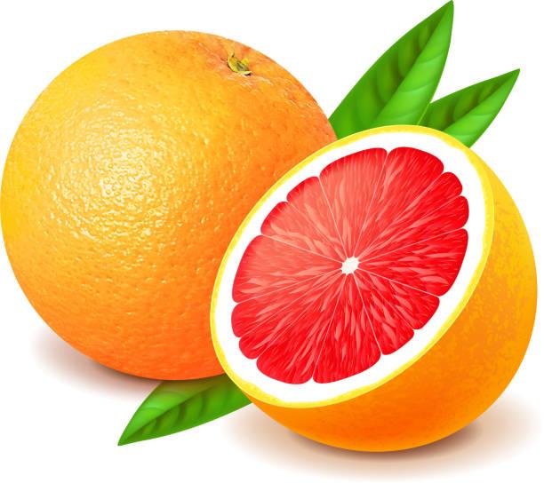 グレープフルーツとスライス白で分離ベクトル - グレープフルーツ点のイラスト素材/クリップアート素材/マンガ素材/アイコン素材