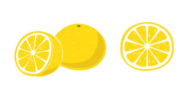 グレープ フルーツ - グレープフルーツ点のイラスト素材/クリップアート素材/マンガ素材/アイコン素材