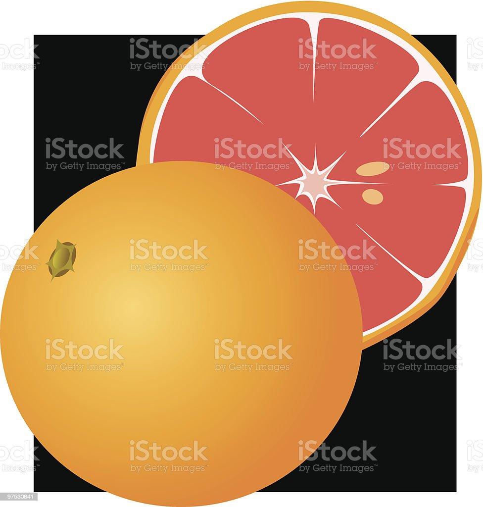 Grapefruit royalty-free grapefruit stock vector art & more images of acid
