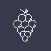 A thin line icon in a fruit theme. Grapes.