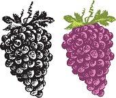 Grapes - Fruit