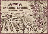 Vintage organic farming label on grapes harvest landscape. Editable EPS10 vector illustration in woodcut style with clipping mask.