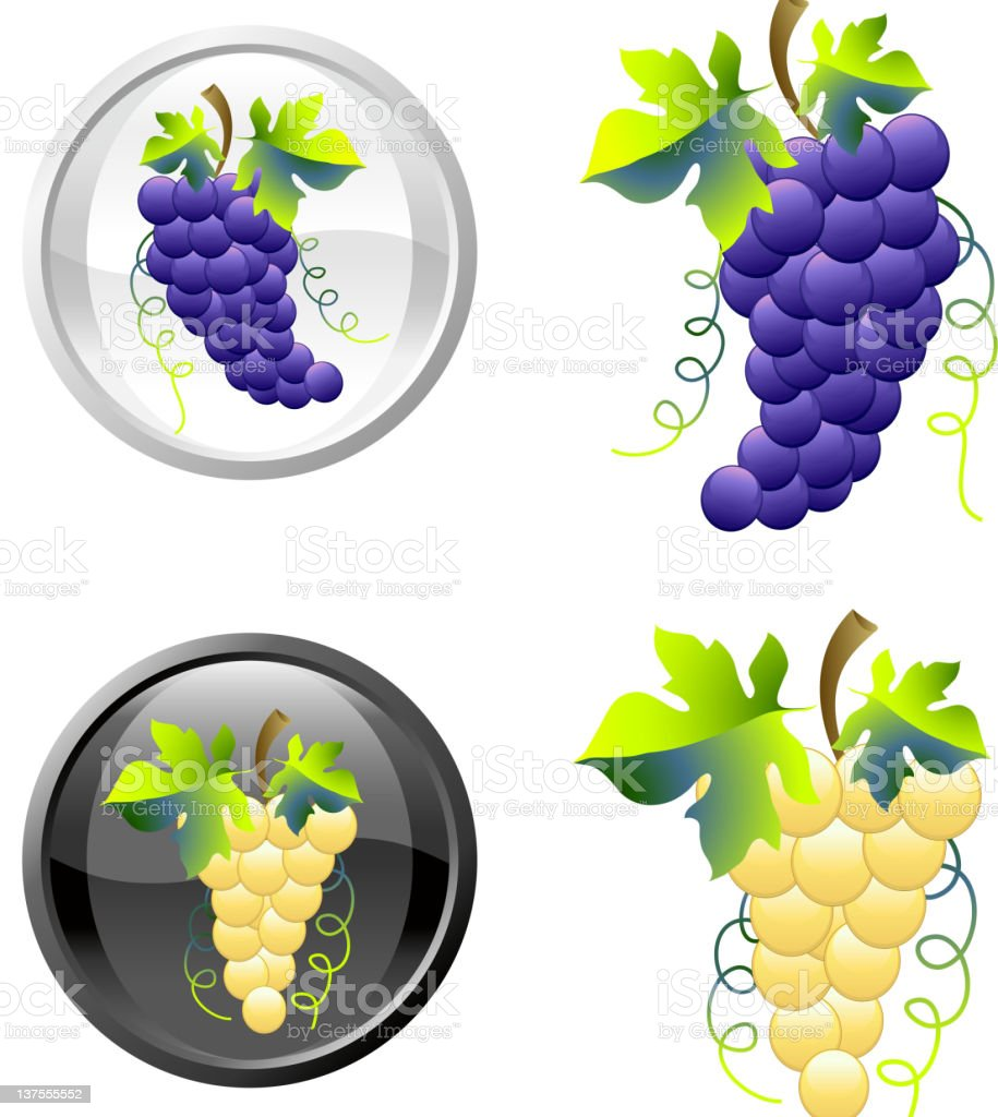 Grapes royalty free vector art in black and white royalty-free stock vector art