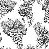Grapes seamless pattern. Hand drawn vector illustration. Wine shop and grapes farm design.