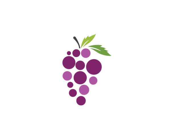 Grapes vector icon illustration design Grapes logo template vector icon illustration design bunch stock illustrations