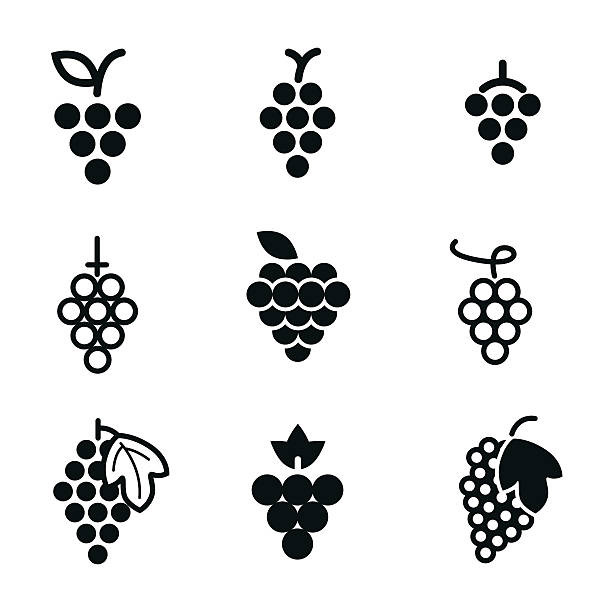 Grapes vector icons. Grapes vector icons. Simple illustration set of 9 grapes elements, editable icons, can be used in logo, UI and web design bunch stock illustrations