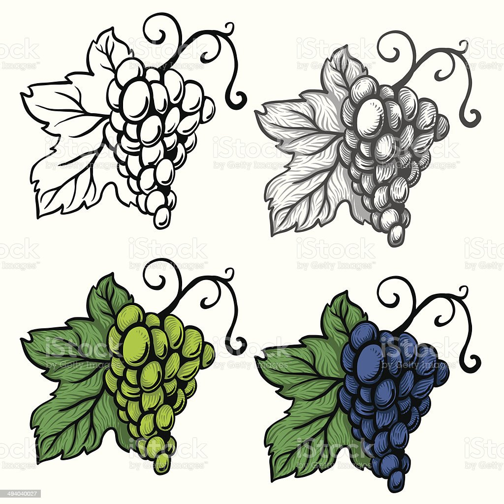 grapes vector royalty-free grapes vector stock vector art & more images of abstract