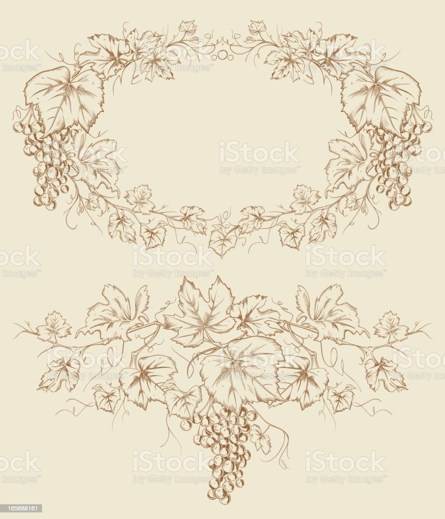 Grapevine Grape Drawing Frames royalty-free stock vector art